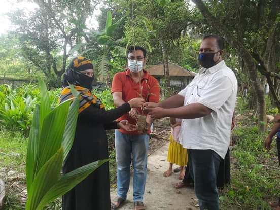 মহেশখালীতে বনবিভাগের নার্সারি সৃজন'র চারাগাছ বিতরণ শুরু