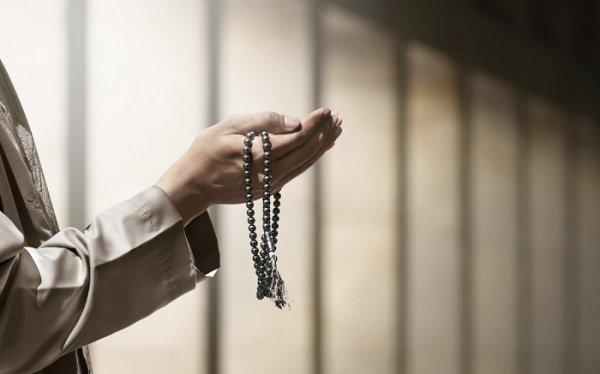 যথাযোগ্য ধর্মীয় মর্যাদায় পালিত হচ্ছে ঈদে মিলাদুন্নবী